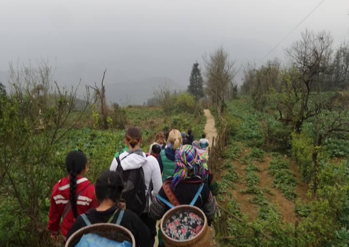 Vietnam: Sapa